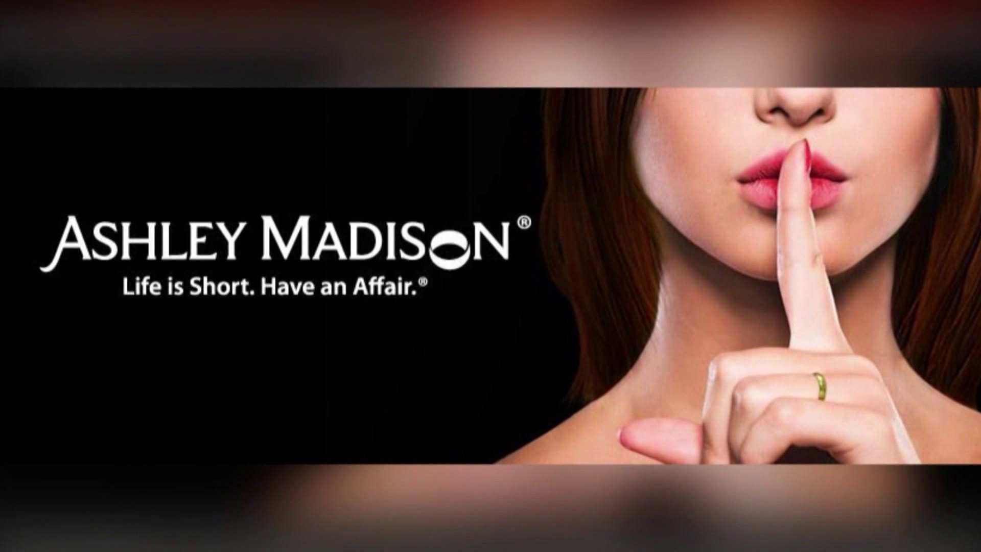 ashley madison is back different bosses security forum ashley madison is back different bosses security forum david firester